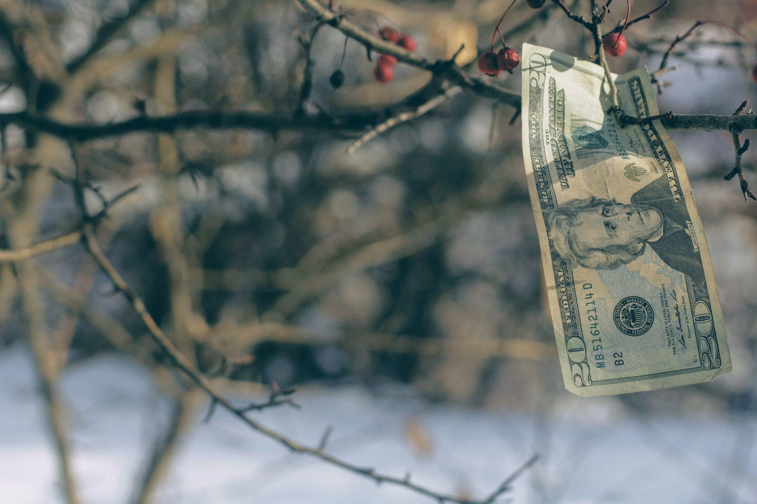 投資初心者でもハイリターンは実現可能?リスクから判断する金融商品の選び方